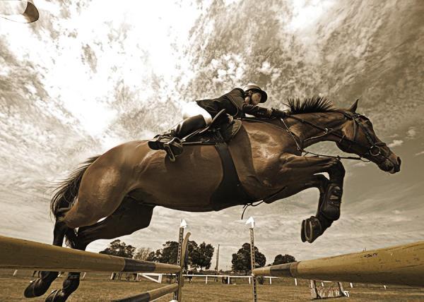 Aqueçam seus cavalos, será dada a largada na Temporada Oficial de Abertura de Salto Iniciante 2017 na Sociedade Hípica de Campinas.