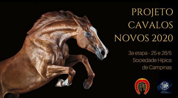 Projeto Cavalos Novos 2020 | Quadro de horários da 3ª etapa