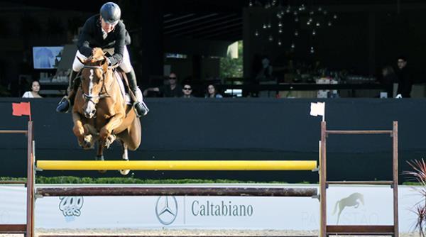 5ª etapa do Projeto Cavalos Novos avaliou 147 animais no Campeonato Paulista