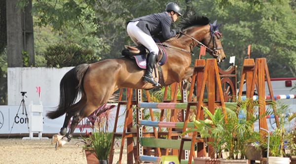 Os cavalos selecionados na 7ª etapa do Projeto Cavalos Novos no Cooper