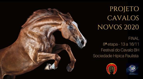 Projeto Cavalos Novos tem etapa final no Festival Nacional do BH