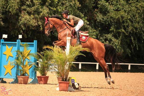 Sebastian Rohde dará clínica aos selecionados na 1ª fase do Projeto Cavalos Novos