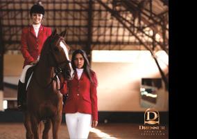 Dressur Equestrian