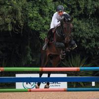 Projeto Cavalos Nov