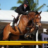 Agromen CBS Cavalos