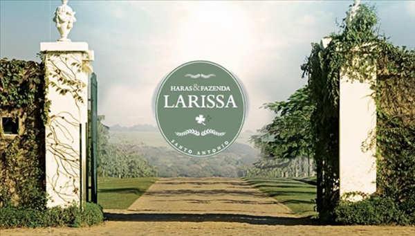 Temporada Oficial de Salto - II Copa Haras Larissa - Resumo do Programa
