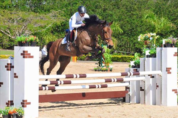 Haras Cooper apresenta a V Etapa do Festival de Cavalos Novos e Cia
